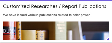 Customized Researches / Report Publications